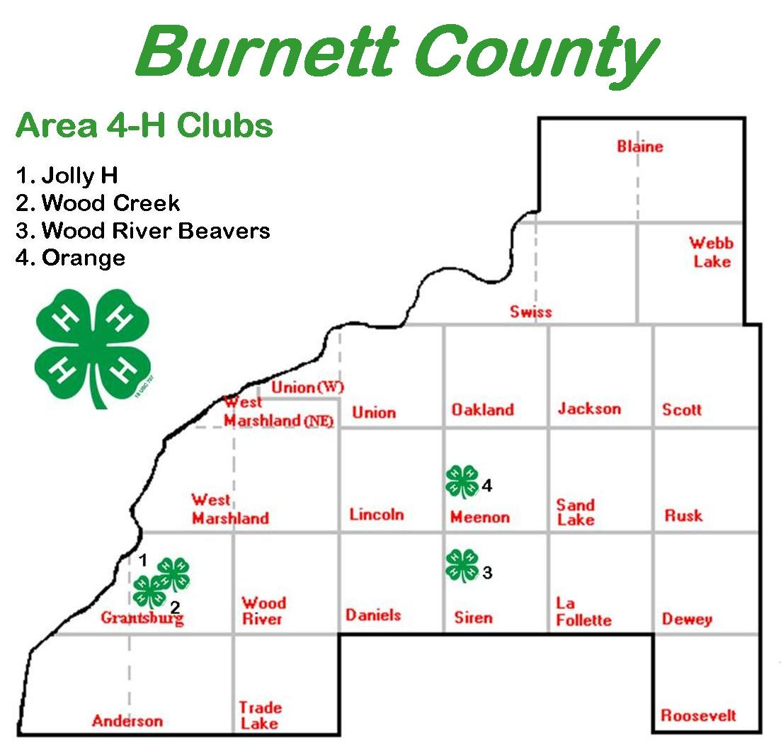 County Clubs